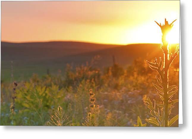 Flint Hills Sunset Greeting Card