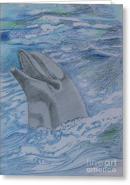 Flipflop Greeting Card by Stephen Brooks