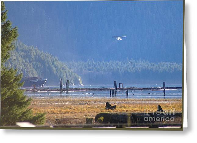 Float Plane Take Off Greeting Card by Stanza Widen