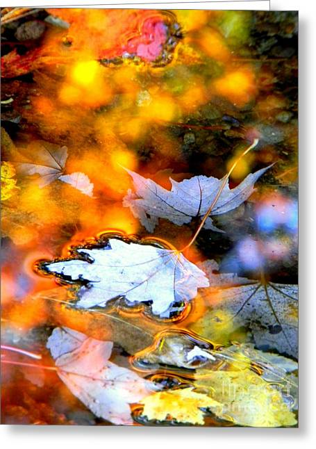Floating Greeting Card by Elfriede Fulda