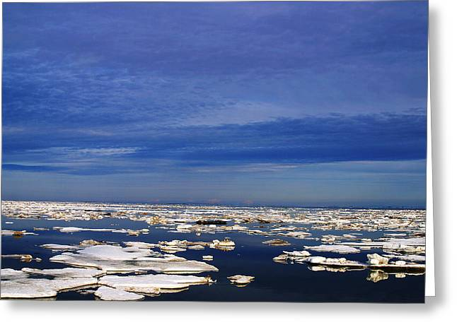 Floating Ice Greeting Card