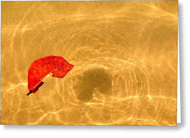 Floating In Gold Greeting Card