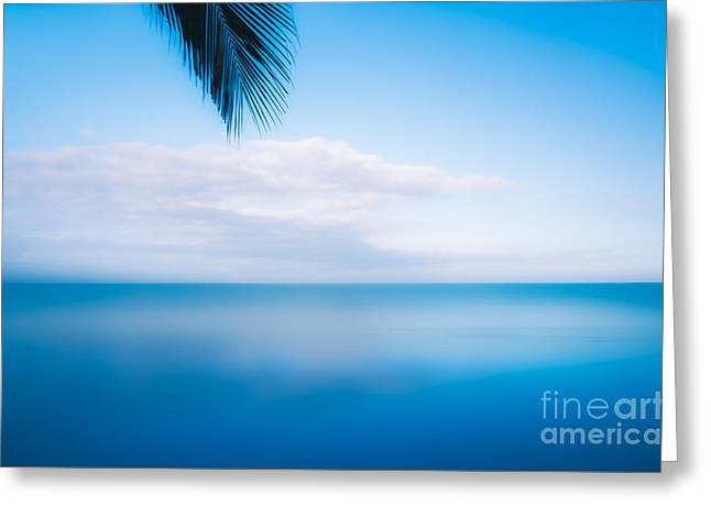 Floating In Mexico Greeting Card by Jon Olmstead
