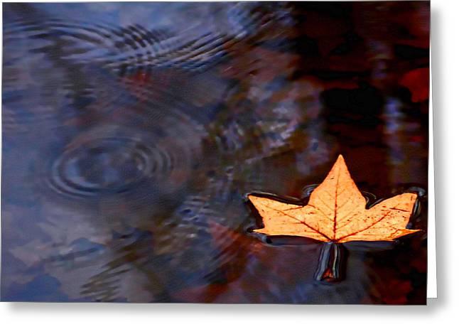 Floating Leaf Greeting Card