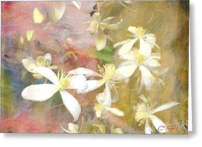 Floating Petals Greeting Card by Colleen Taylor
