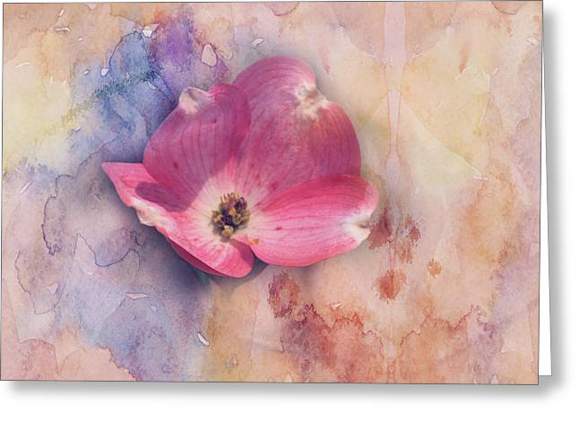 Floating Pink Bloom Greeting Card by Toni Hopper