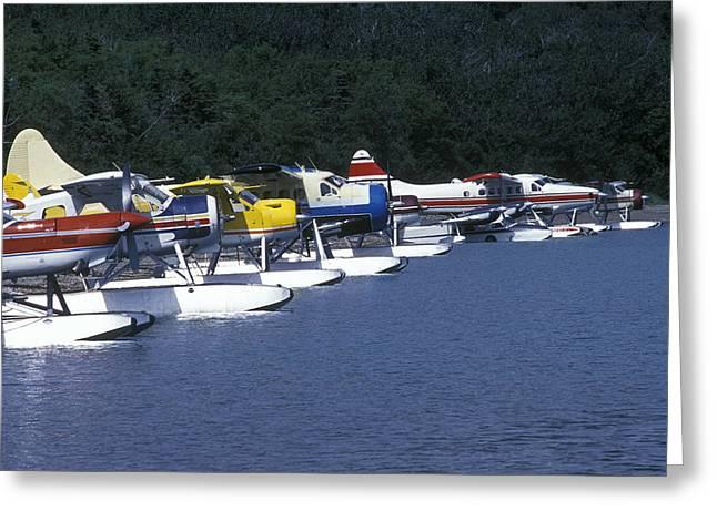 Floatplanes On Naknek Lake For Bear Greeting Card by Rich Reid