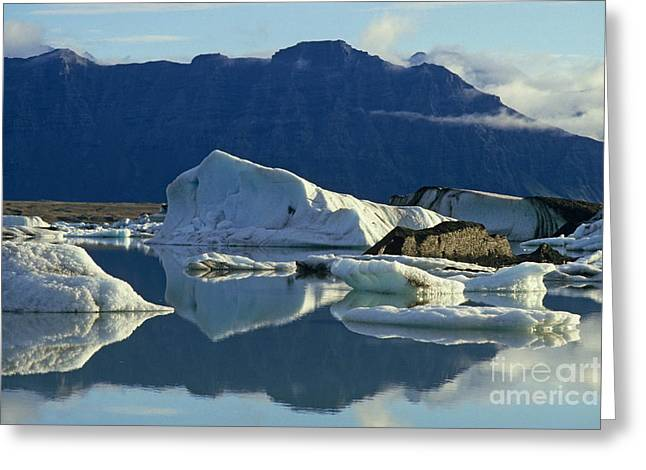 Reflections On Snow Greeting Cards - Floatting field of Icebergs in Iceland Greeting Card by Sami Sarkis