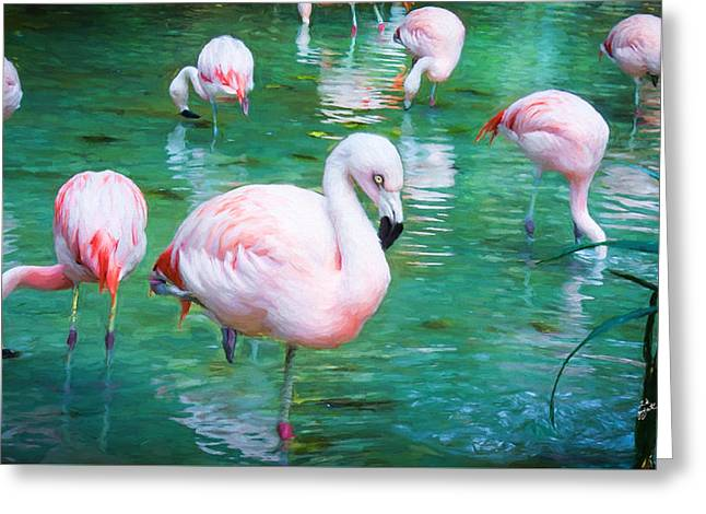 Flock Of Flamingos Greeting Card by TK Goforth