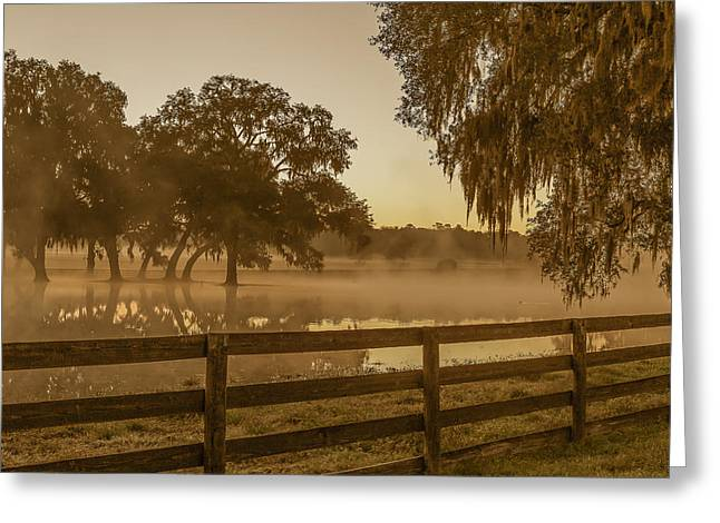 Flooded Pasture Greeting Card by Capt Gerry Hare