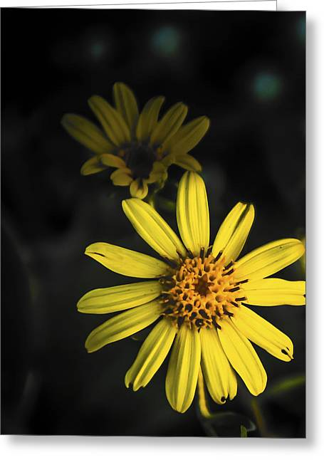 Flora In Yellow Greeting Card