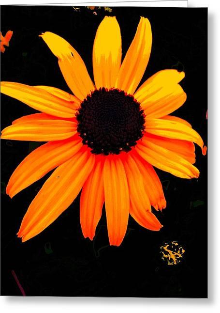 Floral 1 Greeting Card by Chuck Landskroner