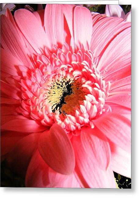 Floral 41 Greeting Card by Chuck Landskroner