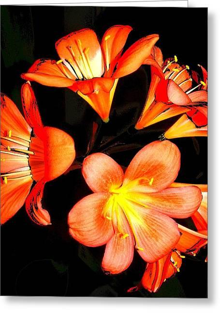 Floral 6019 Greeting Card by Chuck Landskroner