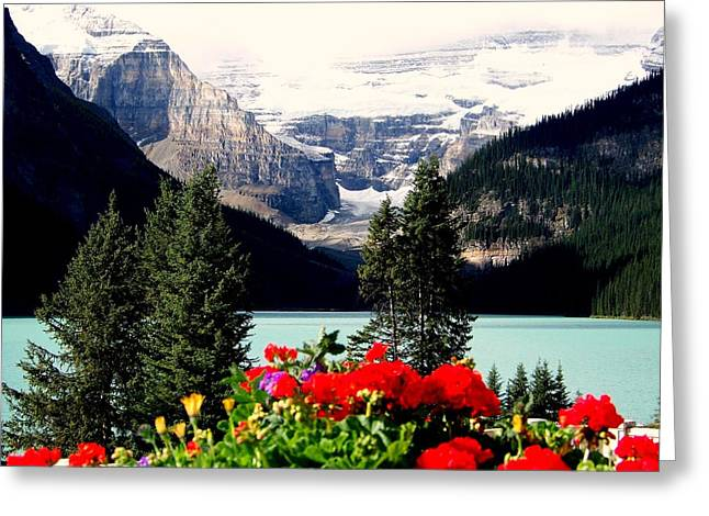 Floral And Ice Greeting Card by Karen Wiles