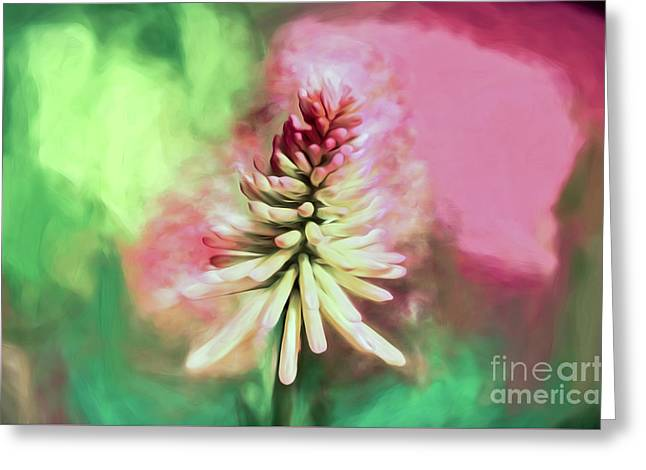 Greeting Card featuring the photograph Floral Art - Red Hot Poker by Kerri Farley