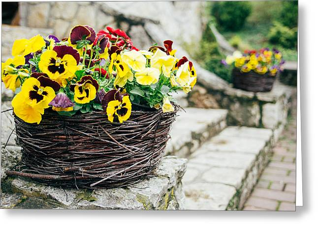Floral Basket Greeting Card by Pati Photography