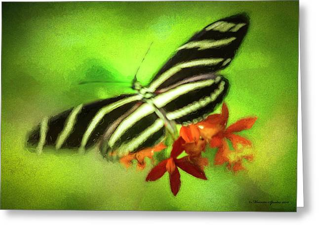 Floral Butterfly Greeting Card by Marvin Spates