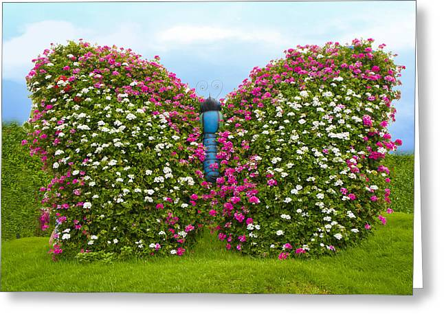 Floral Butterfly Greeting Card