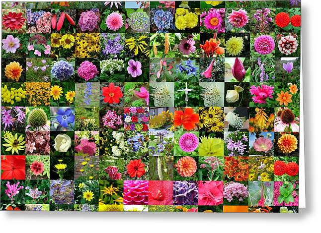 Floral Collage Greeting Card by Joe Cashin