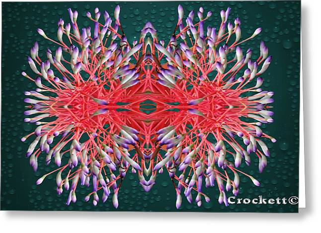 Floral Display Greeting Card by Gary Crockett