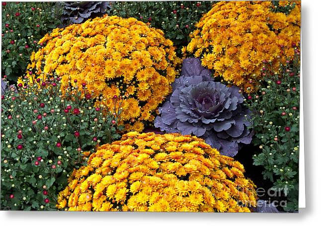 Floral Masterpiece Greeting Card by Ann Horn