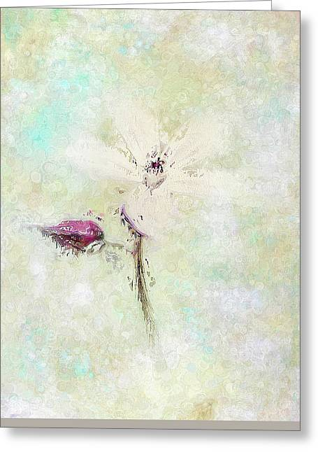 Floral Whispers Greeting Card by Amanda Lakey