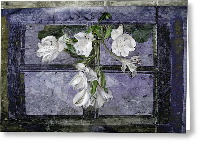 Greeting Card featuring the photograph Floral Window Frame by Bonnie Willis