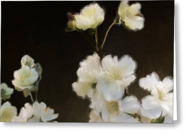 Floral11 Greeting Card