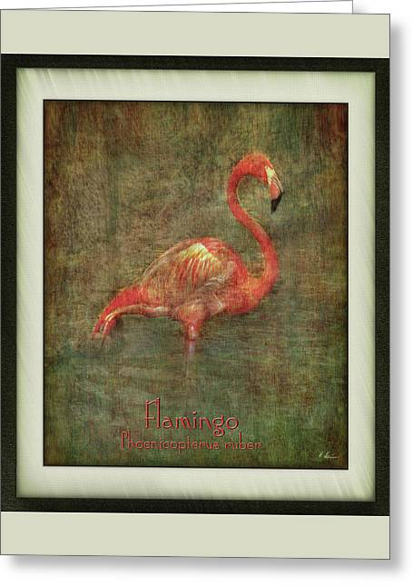 Greeting Card featuring the photograph Florida Art by Hanny Heim