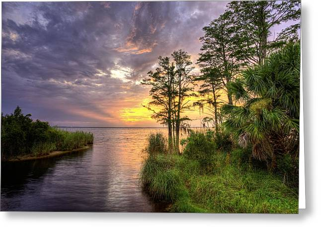 Florida Beyond The Beaches Greeting Card by JC Findley