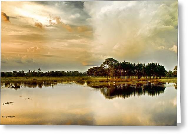 Florida Bird Pond Greeting Card