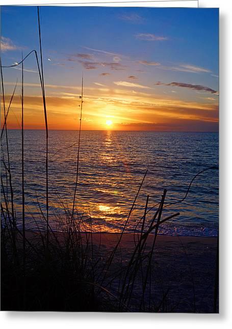 Florida Gulf Coast Sunset Greeting Card