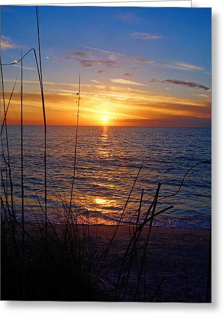Florida Gulf Coast Sunset Greeting Card