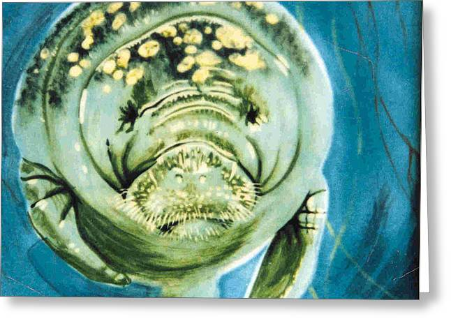 Florida Manatee Greeting Card by Dy Witt