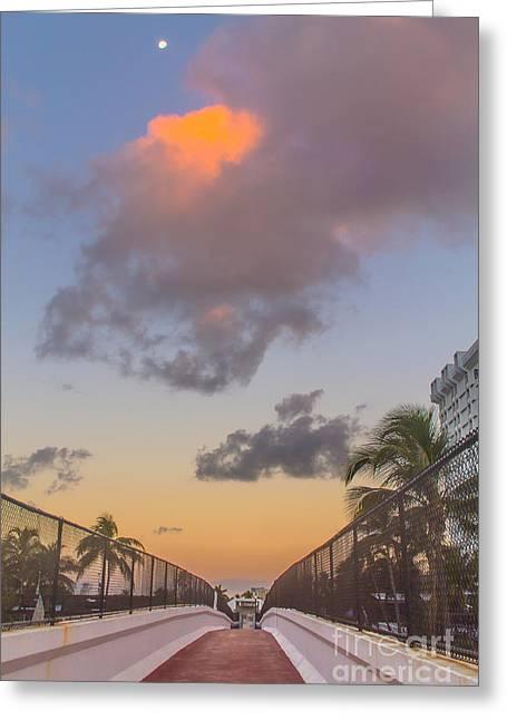 Florida Moon Set Greeting Card