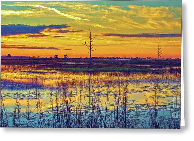 Florida Nature Paradise 2  Greeting Card