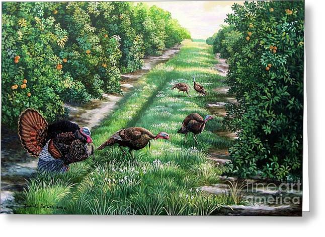 Florida-orange Groves-osceola Turkeys Greeting Card by Daniel Butler