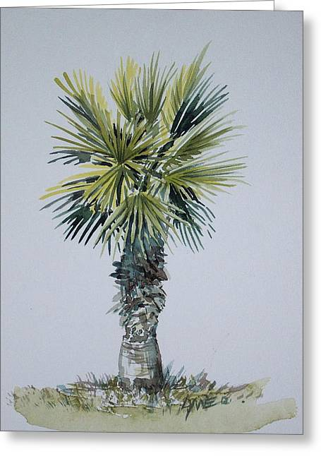 Florida Palm Botanical Greeting Card