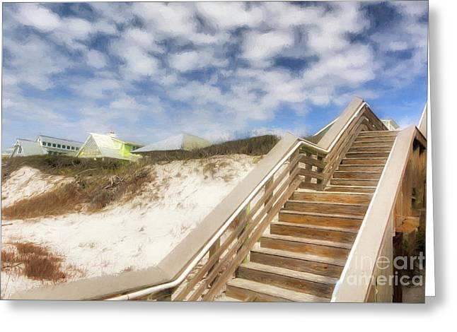 Florida Panhandle Sand Dunes Greeting Card by Mel Steinhauer