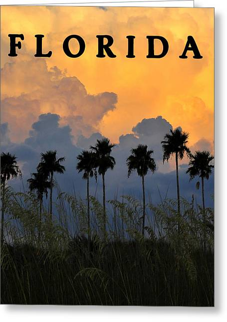 Summer Storm Greeting Cards - Florida Poster Greeting Card by David Lee Thompson