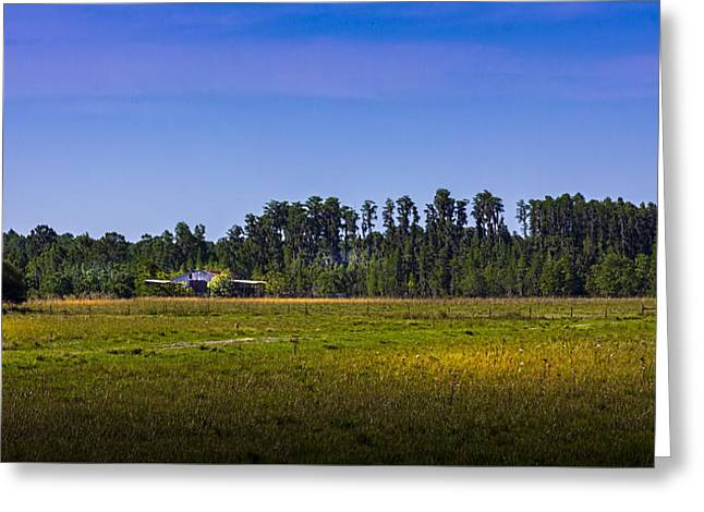 Florida Ranch Greeting Card by Marvin Spates