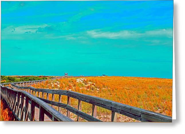 Florida Sand Dunes Atlantic New Smyrna Beach Greeting Card