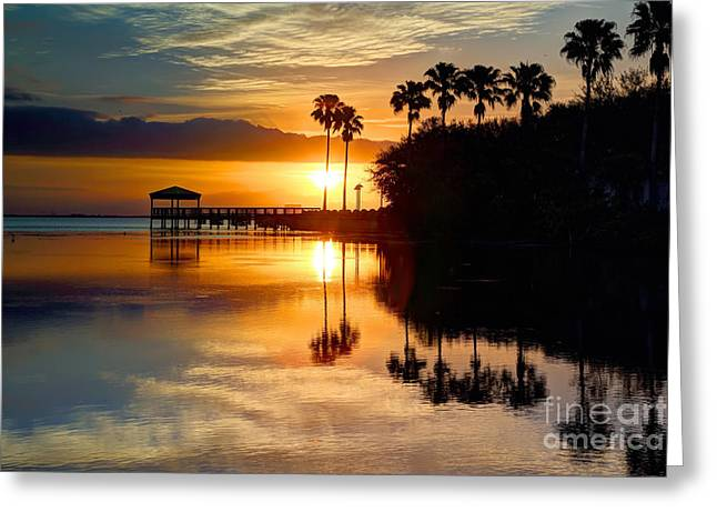 Florida Sunrise Greeting Card by Rick Mann