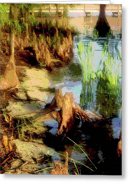 Florida Swamplands Greeting Card by Rianna Stackhouse