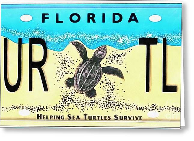 Florida Turtle License Plate Pop Art Painting Greeting Card
