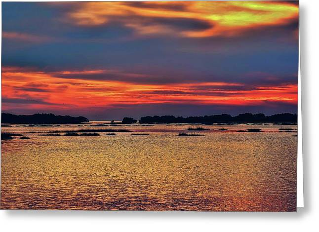 Greeting Card featuring the photograph Florida West Coast  by Louis Ferreira