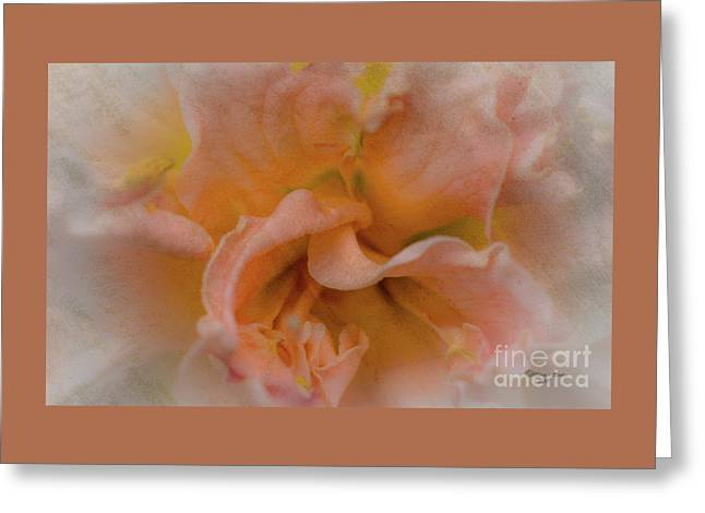 Florwer For You Greeting Card