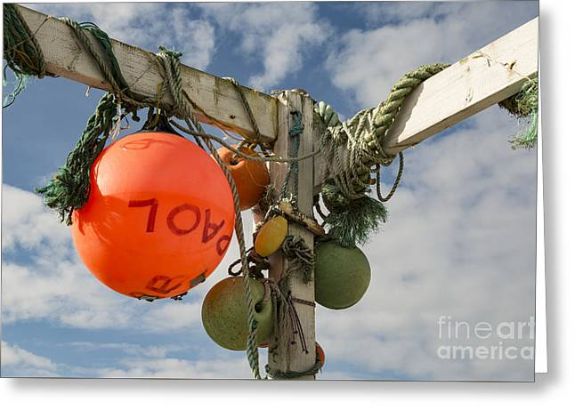 Greeting Card featuring the photograph Flotsam And Jetsam by Brian Roscorla