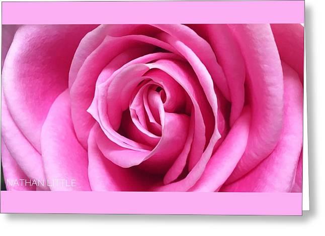 Flourishing Pink Greeting Card